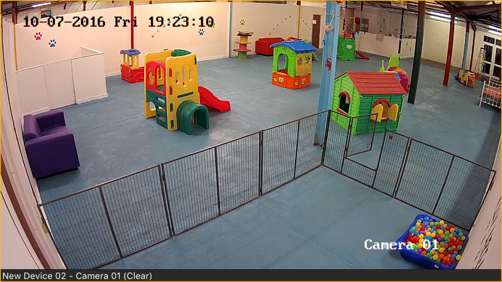 suffolk-canine-creche-webcams
