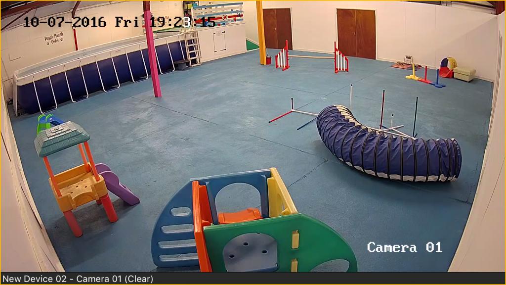 suffolk-canine-creche-webcams1