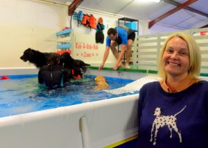 suffolk_canine_creche_pool4